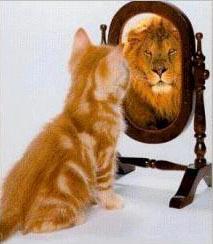 nárcizmus